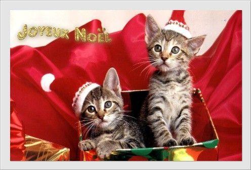 Maman Ce Noël Je Veux Te Dire Combien Je Taime Joyeux