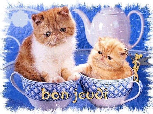BONJOUR-BONSOIR DU MOIS D'AOUT - Page 5 Abebbc58