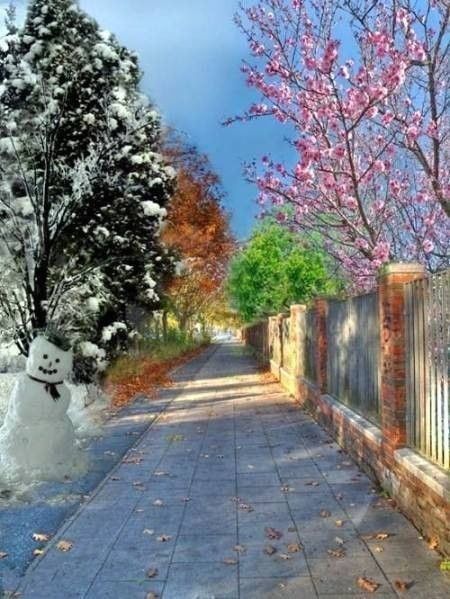Le printemps l 39 t l 39 automne l 39 hiver - Printemps ete automne hiver et printemps ...