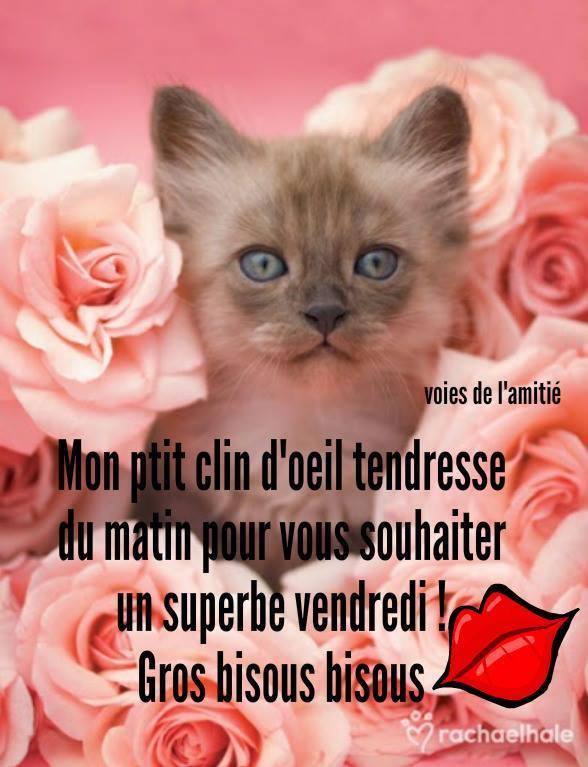 Bienvenue Sur Mon Blog Fripouile27 Page 88